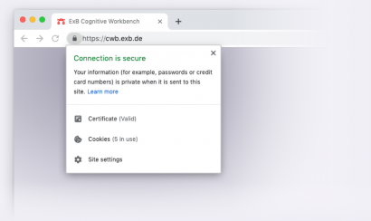 Screenshot Cognitive Workbench (SSL)